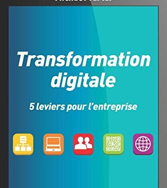 Livre Transformation digitale et modèle de maturité numérique, ouvert et collaboratif